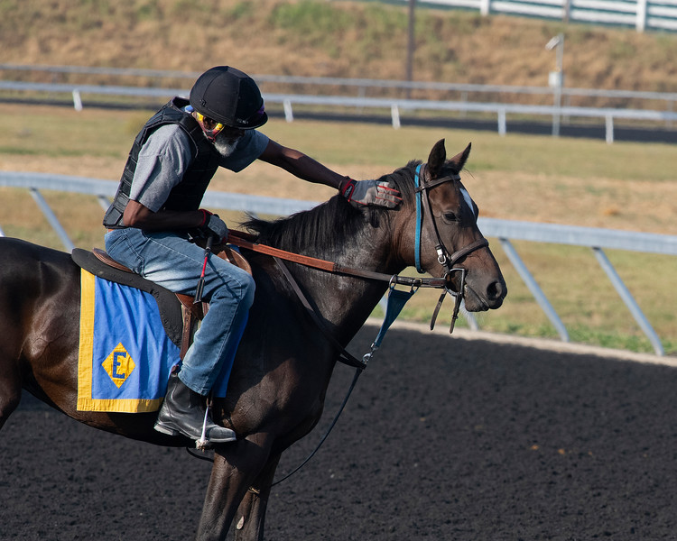 Training on synthetic<br /> at Keeneland