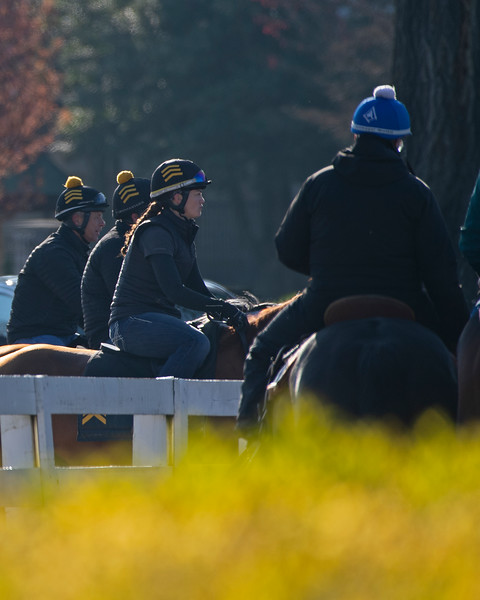 Caption: horses at gap going on track, left, horses leaving track on right<br /> Behind the Scenes at Keeneland during Covid19 virus and the people, horses, and essentials needed to take care of race horses on April 2, 2020 Keeneland in Lexington, KY.