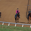 Horse training at Blackwood Stables near Versailles, Ky. Scenes on March 26, 2020  in Versailles, KY.