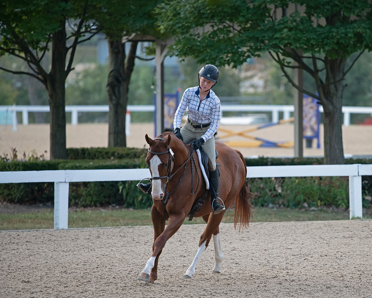 #229<br /> Thoroughbred Makeover at the Kentucky Horse Park.