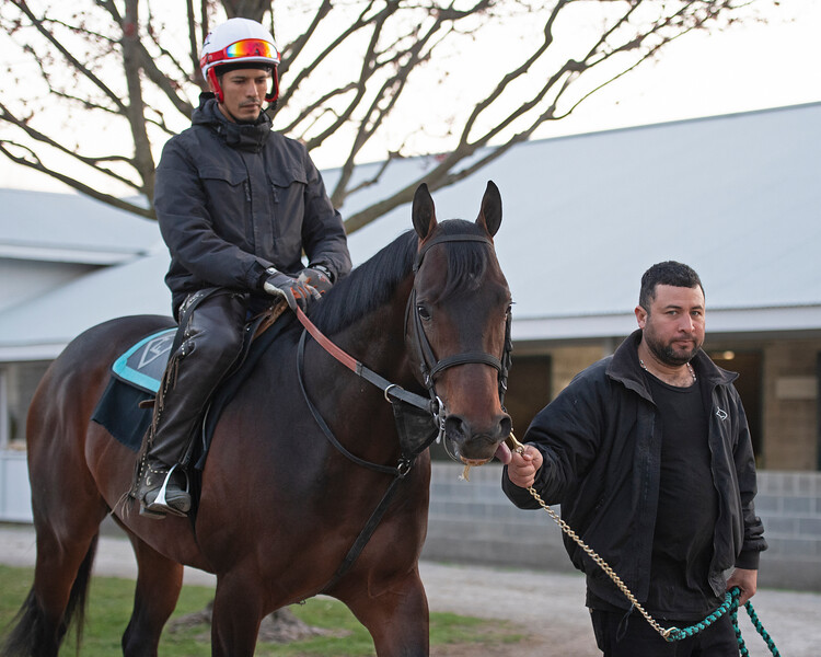 Morning scenes at Keeneland in Lexington, Ky., on April 3, 2019. Runaway Ghost