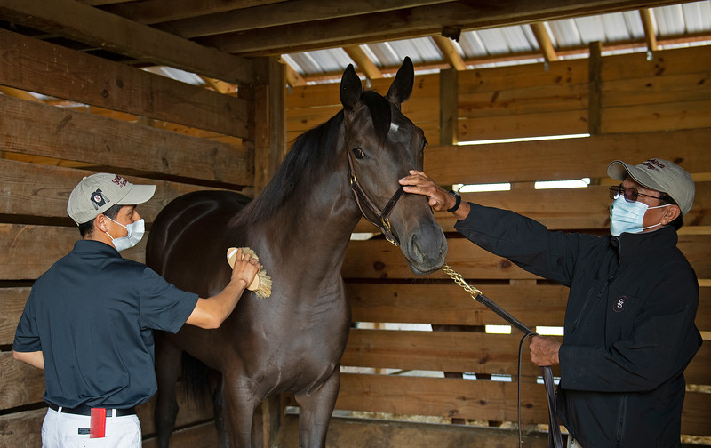Caption:  filly by American Pharoah out of Easy Living with Kevin Martinez and Antonio Alvarez.<br /> Aidan and Leah O'Meara at Stonehaven Steadings near Versailles, Ky. on Aug. 7, 2020 Stonehaven Steadings in Versailles, KY.