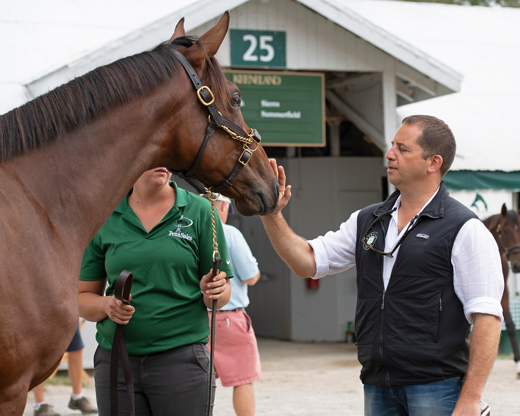 David Ingordo pats Hip 77, a Penn Sales' colt by Quality Road out of Settling For Gold. <br /> at the Keeneland September Sale.