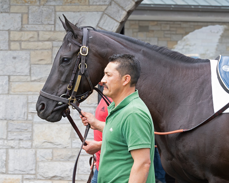Rymska schooling<br /> Matt Carrouthers and Keeneland scenes at Keeneland on April 11, 2019 in Lexington,  Ky.