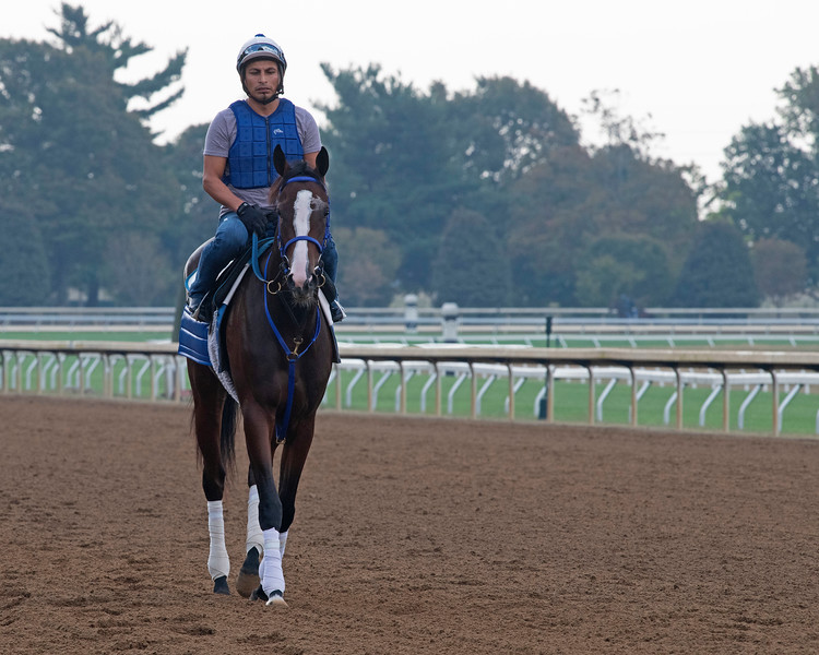 Morning Gold<br /> at Keeneland