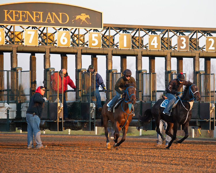 Morning scenes at Keeneland in Lexington, Ky., on April 3, 2019. Breaking from the gate scene.