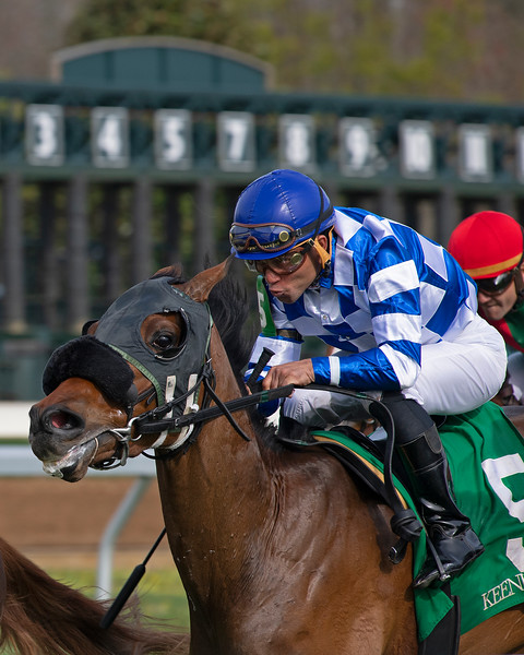 Turf racing scene at Keeneland on April 11, 2019 in Lexington,  Ky.
