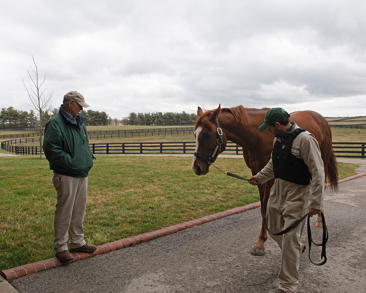 Caption: Billy watches as Catalina Cruiser comes in about 1 pm. Daily Life on Billy Sellers, Lane's End Farm stallion manager who started working for the farm in 1982 and who has been their only stallion manager since 1985 when the farm acquired their first stallions, photographed on<br /> March 3, 2020 Lane's End Farm in Versailles, KY.
