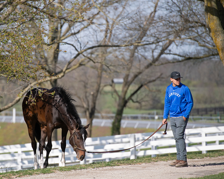 Brad's Cowboy with Daniel Leitch<br /> Morning sales and racing scenes at Keeneland in Lexington, Ky., on April 4, 2019