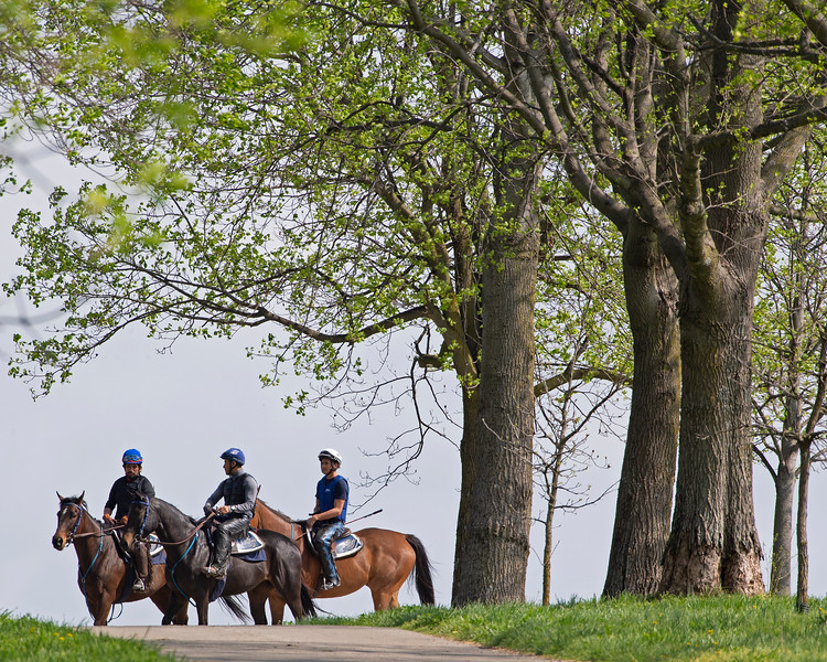 Caption: (L-R):  Lady Rocket filly, Quantitativbreezin filly Trendy Neve filly,<br /> Training at Silver Springs Training, part of Silver Springs Stud, near Lexington, Ky.,  on April 8, 2020 Silver Springs in Lexington, KY.