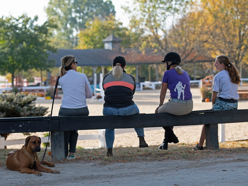 scene at<br /> Thoroughbred Makeover at the Kentucky Horse Park.
