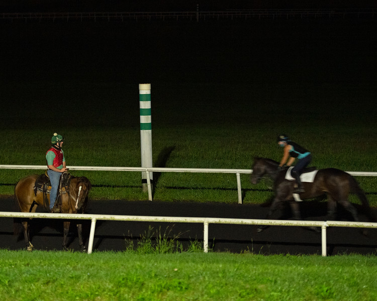 Caption:  first set that went out at 5:30 am. <br /> A native of Oklahoma, Heath started working at WinStar Farm on October 10, 2014, and became the farm trainer in October of 2018. Presently he has about 100 horses in training at the WinStar Farm training center, where they have a 7 1/2-furlong main track and 3/4 of a mile undulating turf gallop.<br /> Daily Life series on Destin Heath, farm trainer at WinStar Farm on Aug. 11, 2020 WinStar Farm in Versailles, KY.