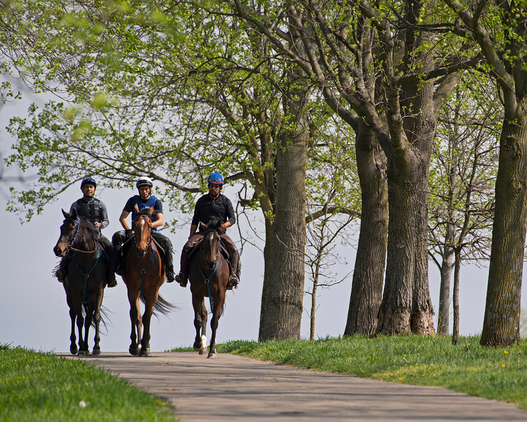 Caption:  (L-R): Quantitativbreezin filly, Trendy Neve filly, Lady Rocket filly<br /> Training at Silver Springs Training, part of Silver Springs Stud, near Lexington, Ky.,  on April 8, 2020 Silver Springs in Lexington, KY.
