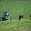 Caption: horses graze while mowing goes on in field<br /> Mill Ridge Farm scenes, near Lexington, Ky.,  on April 15, 2020 Mill Ridge in Lexington, KY.