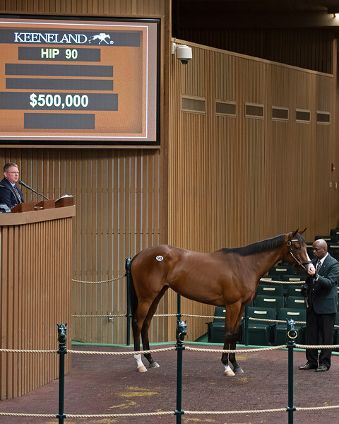 Hip 90 Sweet Diane, Elite Sales<br /> Keeneland Horses of Racing Age and 2yos in Training at Keeneland on April 9, 2019 in Lexington, Ky.