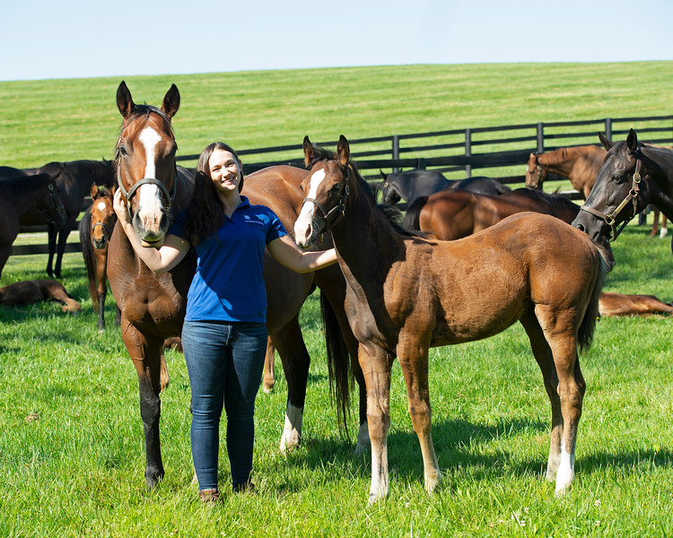 Caption: Former UK AG Equine Program student Julie Witt, with Chausie and Union Rags filly.<br /> Julie Witt, an UK Equine program graduate, at Sun Valley Farm near Versailles, Ky., on June 7, 2020 Julie Witt in Versailles, KY.