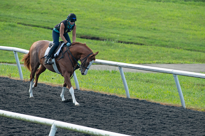 Caption: Jesslyn (Jess) , Woodall on Perfect Impression<br /> A native of Oklahoma, Heath started working at WinStar Farm on October 10, 2014, and became the farm trainer in October of 2018. Presently he has about 100 horses in training at the WinStar Farm training center, where they have a 7 1/2-furlong main track and 3/4 of a mile undulating turf gallop.<br /> Daily Life series on Destin Heath, farm trainer at WinStar Farm on Aug. 11, 2020 WinStar Farm in Versailles, KY.