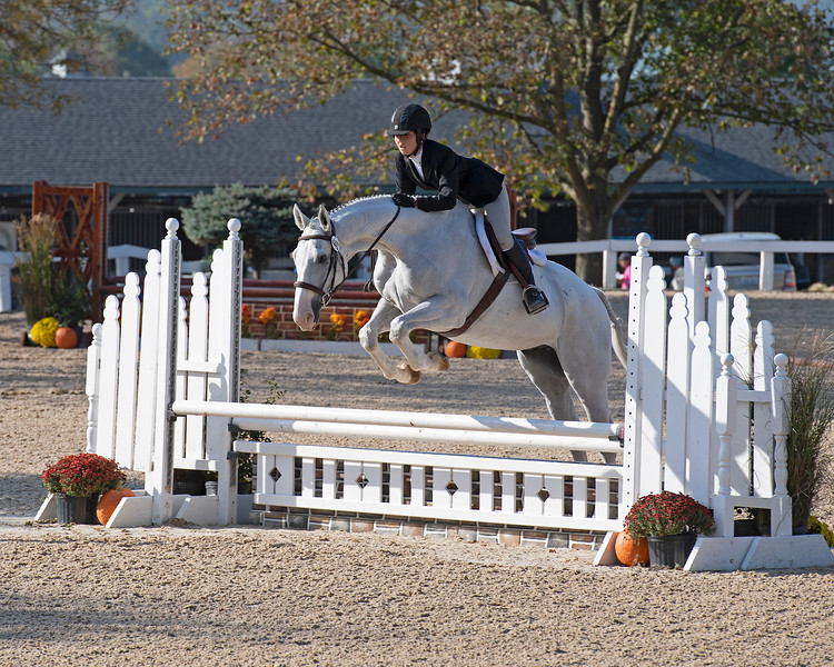 #441 Two Term Leader with Cristiana Botsch<br /> Thoroughbred Makeover at the Kentucky Horse Park.