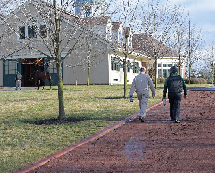 Caption: after last breeding of morning session with Candy Ride, Billy, left, walks up to the stallion barn complex. Daily Life on Billy Sellers, Lane's End Farm stallion manager who started working for the farm in 1982 and who has been their only stallion manager since 1985 when the farm acquired their first stallions, photographed on<br /> March 3, 2020 Lane's End Farm in Versailles, KY.