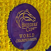 Caption: Drew reflected in Breeders' Cup flower blanket<br /> Breeders' Cup CEO and President Drew Fleming in the Breeders' Cup office in downtown Lexington, Ky., on June 16, 2020 Drew Fleming in Lexington, KY.