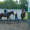 Caption: Dennis Heath, right, on Fred, watches as Wars and Rumors with Arturo Aranda heads to the gate for gate break<br /> A native of Oklahoma, Heath started working at WinStar Farm on October 10, 2014, and became the farm trainer in October of 2018. Presently he has about 100 horses in training at the WinStar Farm training center, where they have a 7 1/2-furlong main track and 3/4 of a mile undulating turf gallop.<br /> Daily Life series on Destin Heath, farm trainer at WinStar Farm on Aug. 11, 2020 WinStar Farm in Versailles, KY.
