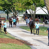 Scene<br /> at the Keeneland September Sale.