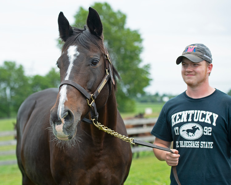 Caption: with Connor Burton<br /> Hollywood Story at Starwood Farm near Versailles, Ky., on June 30, 2020 Starwood Farm in Versailles, KY.