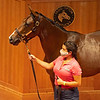 Hip 473 filly by Kingman out of Amber Romance from South Point Sales,<br /> Fasig-Tipton Selected Yearlings Showcase in Lexington, KY on September 10, 2020.