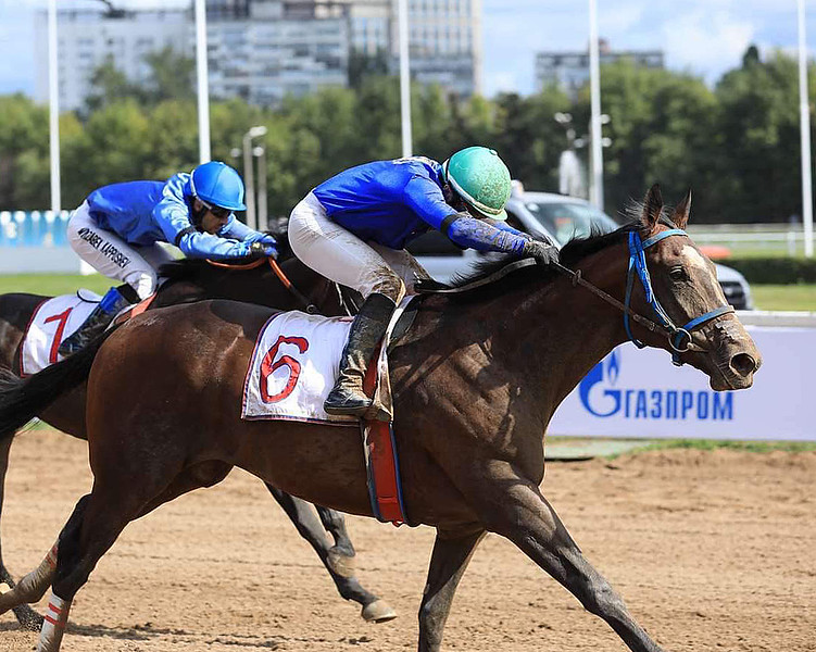 Great Winner wins Grand Prix at Russia's Central Moscow Hippodrome on Aug. 25, 2019.