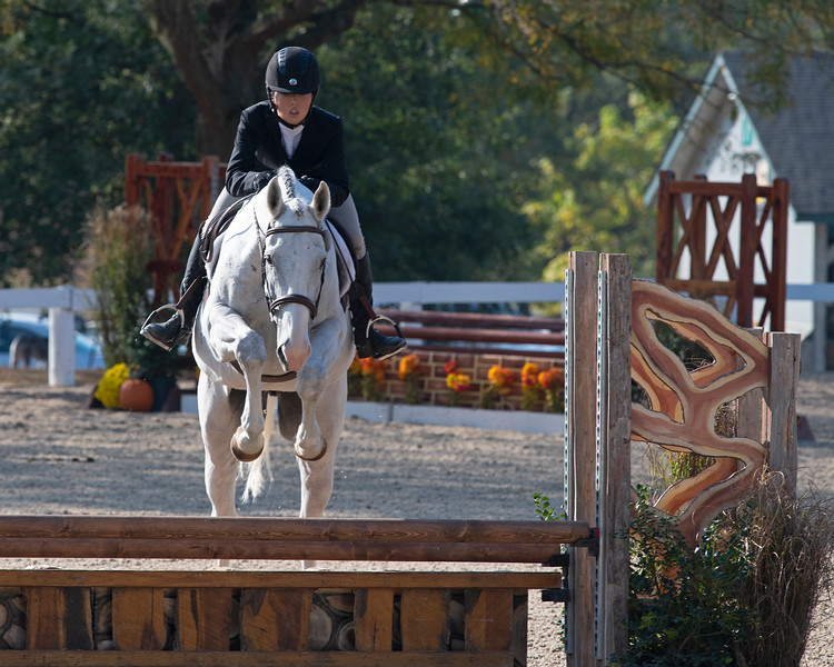 #441<br /> Thoroughbred Makeover at the Kentucky Horse Park.