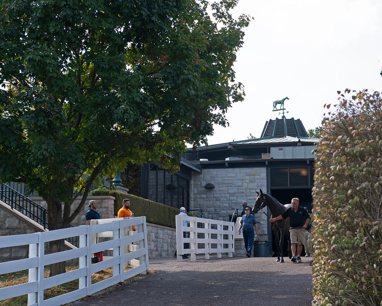 Scene<br /> at Keeneland September sale.