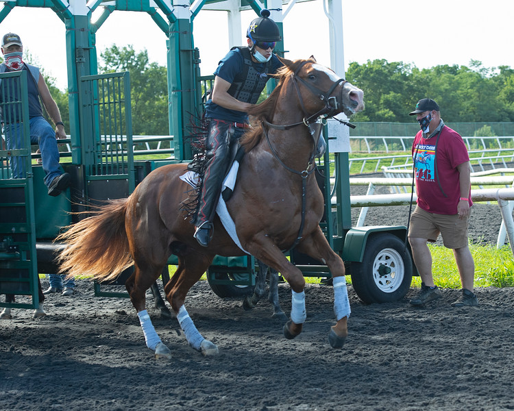 Caption: (L-R): Alvaro Quinteros on Warrant learns to break from the gate and 2018 Winterwonderland (hidden) with Jesslyn (Jess) Woodall<br /> A native of Oklahoma, Heath started working at WinStar Farm on October 10, 2014, and became the farm trainer in October of 2018. Presently he has about 100 horses in training at the WinStar Farm training center, where they have a 7 1/2-furlong main track and 3/4 of a mile undulating turf gallop.<br /> Daily Life series on Destin Heath, farm trainer at WinStar Farm on Aug. 11, 2020 WinStar Farm in Versailles, KY.