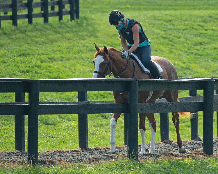Caption: Jess Woodall on <br /> A native of Oklahoma, Heath started working at WinStar Farm on October 10, 2014, and became the farm trainer in October of 2018. Presently he has about 100 horses in training at the WinStar Farm training center, where they have a 7 1/2-furlong main track and 3/4 of a mile undulating turf gallop.<br /> Daily Life series on Destin Heath, farm trainer at WinStar Farm on Aug. 11, 2020 WinStar Farm in Versailles, KY.