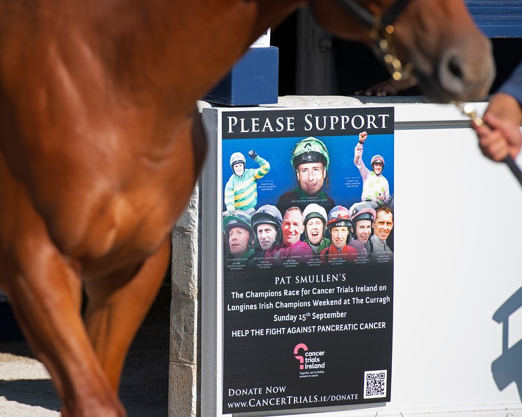 Campaign sign for fight against cancer with Pat Smullen at Four Star Sales consignment<br /> at the Keeneland September Sale.