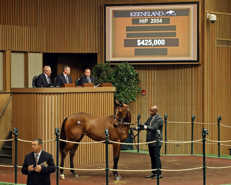 Hip 2054 filly by Nyquist out of Is It Safe at Keeneland.