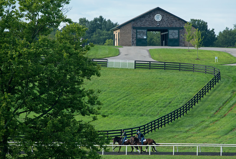Caption:  horses train<br /> A native of Oklahoma, Heath started working at WinStar Farm on October 10, 2014, and became the farm trainer in October of 2018. Presently he has about 100 horses in training at the WinStar Farm training center, where they have a 7 1/2-furlong main track and 3/4 of a mile undulating turf gallop.<br /> Daily Life series on Destin Heath, farm trainer at WinStar Farm on Aug. 11, 2020 WinStar Farm in Versailles, KY.