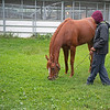 Got Stormy with David Adams<br /> at Woodbine.