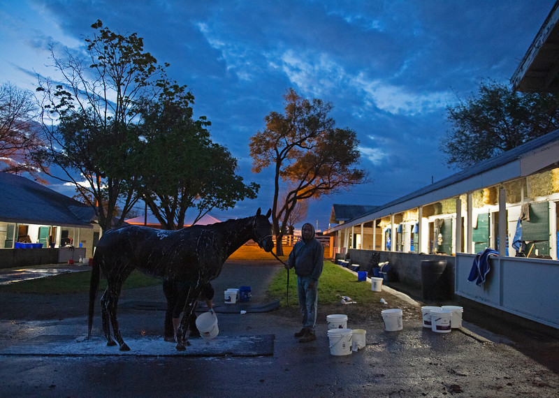 Caption: getting a bath before sunrise<br /> Midnight Bisou at Keeneland on May 2, 2020 Keeneland in Lexington, KY.