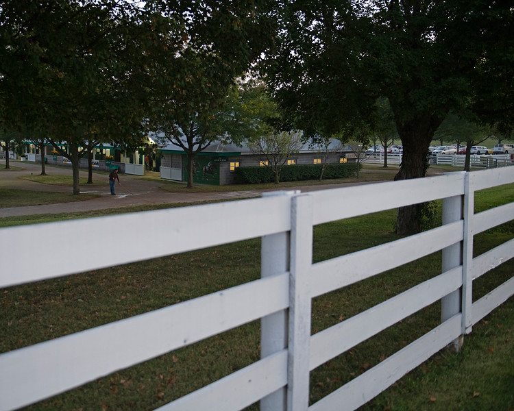 Early morning scene at Lane's End's consignment<br /> at the Keeneland September Sale.