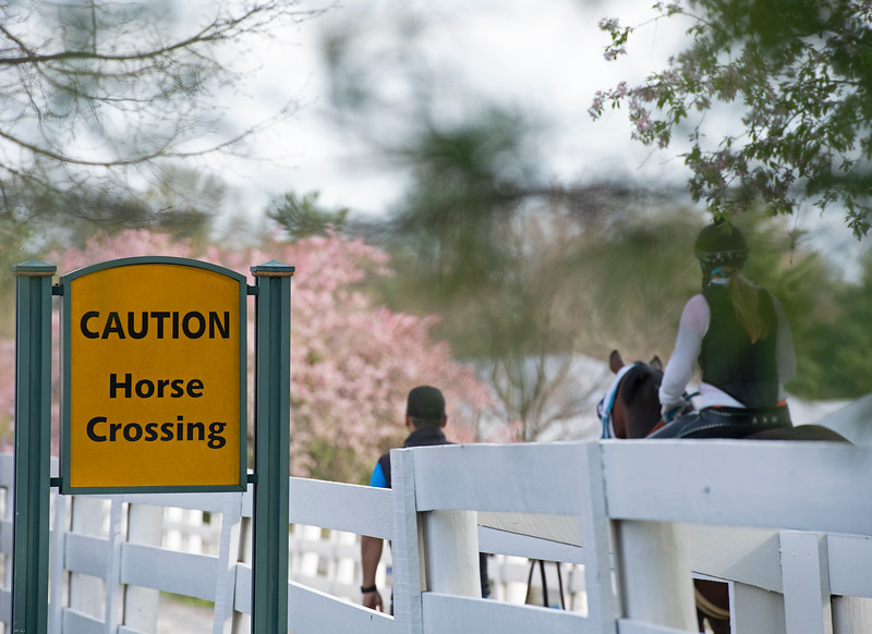 HOrse Crossing, sign<br /> Keeneland morning scenes at Keeneland<br />  on April 11, 2019 in Lexington, Ky.
