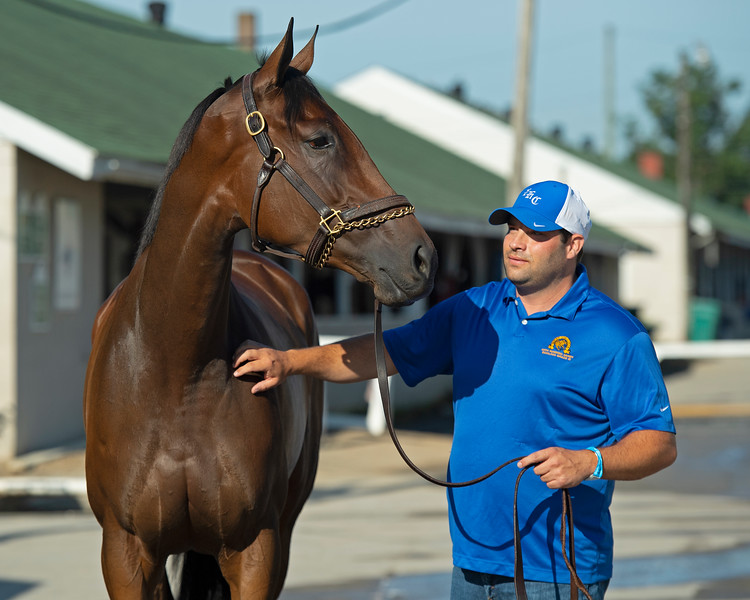 Brad Cox with Shedaresthedevil<br /> The morning after Authentic wins the Kentucky Derby (G1) at Churchill Downs, Louisville, KY on September 5, 2020.