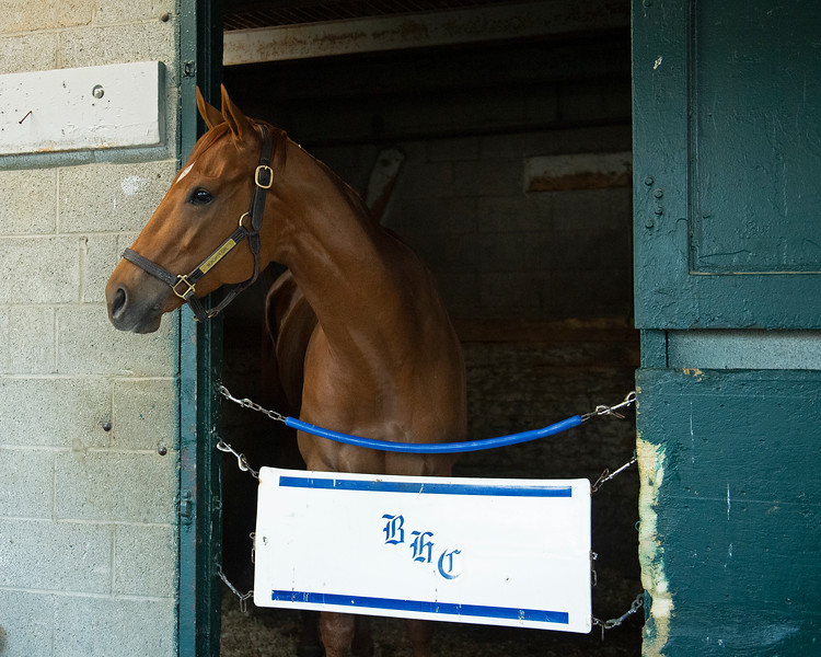 Caption: Monomoy Girl<br /> Midnight Bisou at Keeneland on May 2, 2020 Keeneland in Lexington, KY.