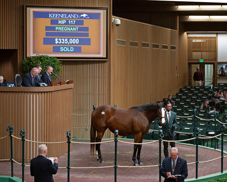 Hip 117 Zia in foal to Into Mischief from Ballysax and purchased by Price Headley Jan. 13, 2020 Keeneland in Lexington, KY.