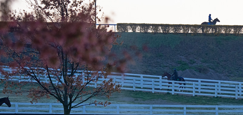 Caption: Horses training from the Rice Road barn area<br /> Behind the Scenes at Keeneland during Covid19 virus and the people, horses, and essentials needed to take care of race horses on April 2, 2020 Keeneland in Lexington, KY.