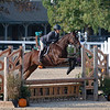 #398<br /> Thoroughbred Makeover at the Kentucky Horse Park.