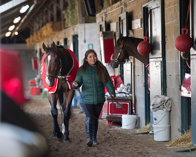 Morning scenes at Keeneland in Lexington, Ky., on April 3, 2019. scene at Mark Casse shedrow with Battle of Memphis