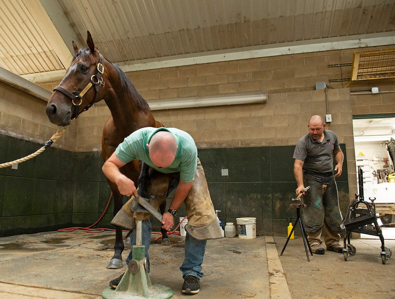 Caption:  Afternoon activiities include farrier work, as Heath shoes Stumbles his pony. Heath is learning how to shoe a horse from WinStar farrier Wayne Thompson (right). <br /> A native of Oklahoma, Heath started working at WinStar Farm on October 10, 2014, and became the farm trainer in October of 2018. Presently he has about 100 horses in training at the WinStar Farm training center, where they have a 7 1/2-furlong main track and 3/4 of a mile undulating turf gallop.<br /> Daily Life series on Destin Heath, farm trainer at WinStar Farm on Aug. 11, 2020 WinStar Farm in Versailles, KY.
