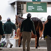 Scenes during the Keeneland January sales on Jan. 11, 2020 Keeneland in Lexington, KY.