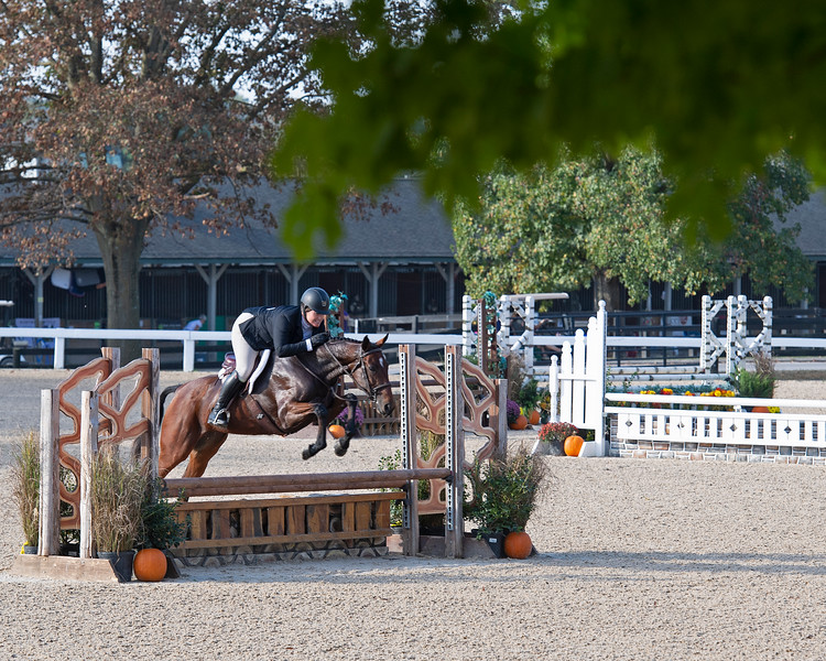 #419 Tenpin Sugar with Katherine Deichmann<br /> Thoroughbred Makeover at the Kentucky Horse Park.