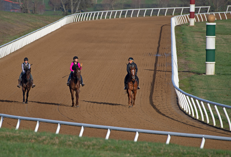 Horse training at Blackwood Stables near Versailles, Ky. Scenes on<br /> March 26, 2020  in Versailles, KY.